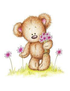 teddy blumen